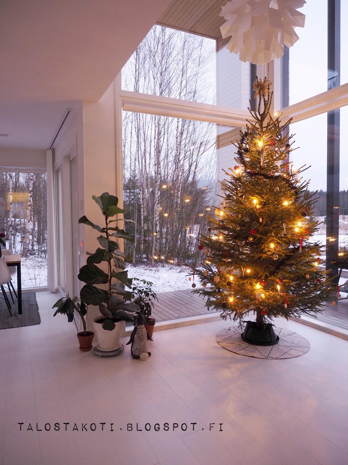 joulukuusi, olohuone, maisemaikkunat