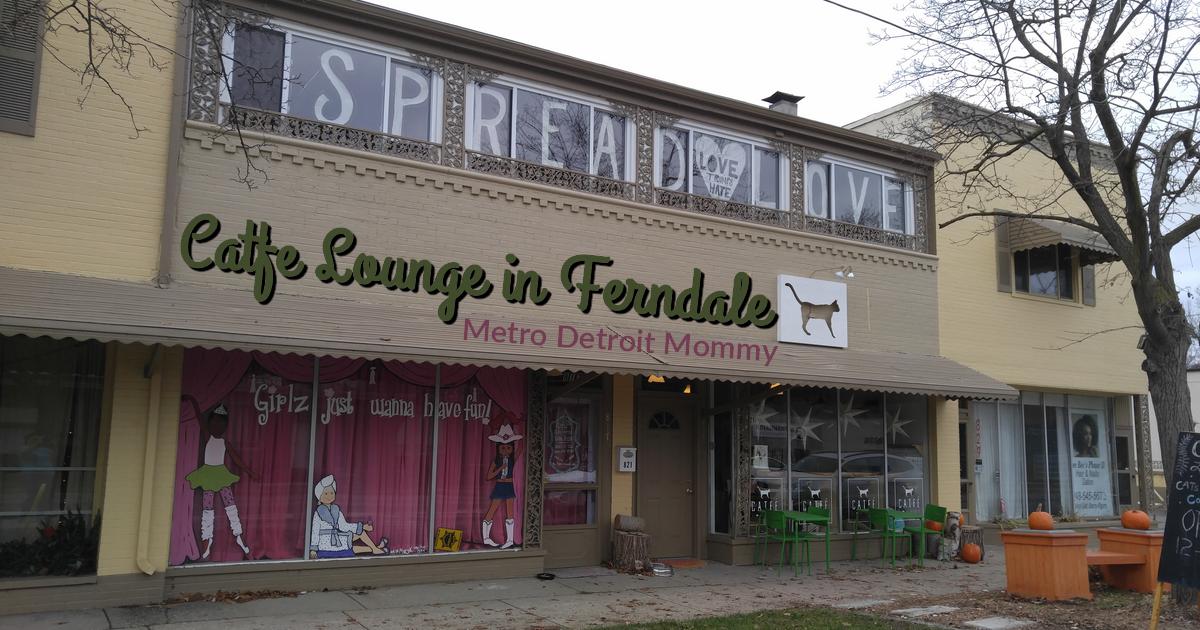 Catfe Lounge in Ferndale