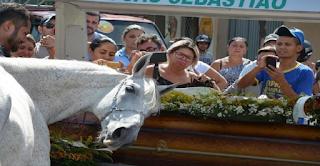 Άντρας πεθαίνει ξαφνικά και το άλογο του τον μυρίζει και καταρρέει στην κηδεία του.