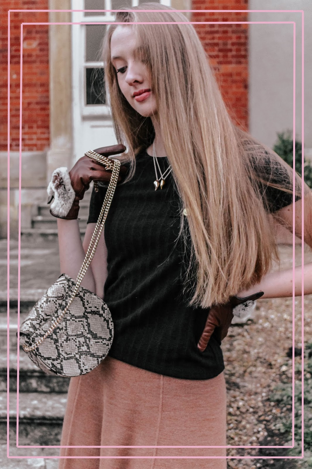 Snakeskin Circle Gold Chain Bag