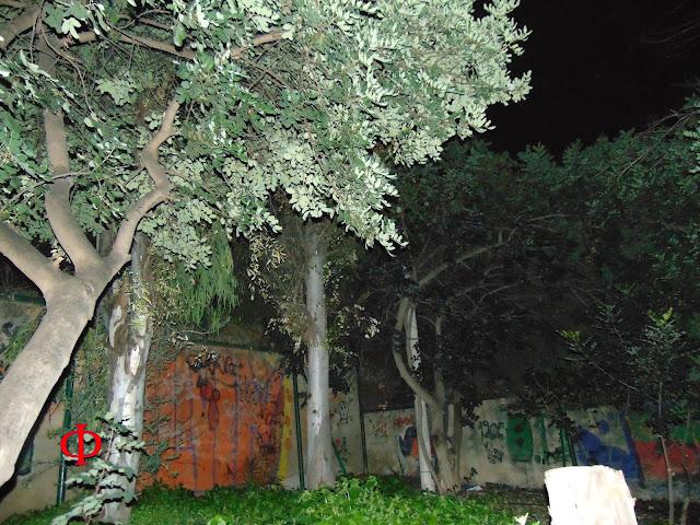 Άλσος Λογγίνου, Α' Νεκροταφείο