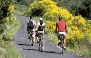 Activité physique, le vélo