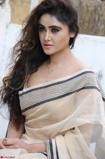 Sony Charishta in Brown saree Cute Beauty   IMG 3609 1600x1067.JPG