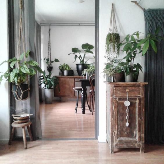 blog deco - tendance jardin suspendu