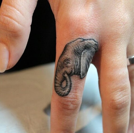 Uma cabeça de elefante, é retratado em que o portador do dedo indicador.