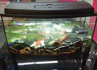 Alte Handys im Wasser Aquarium - Media Markt lustig