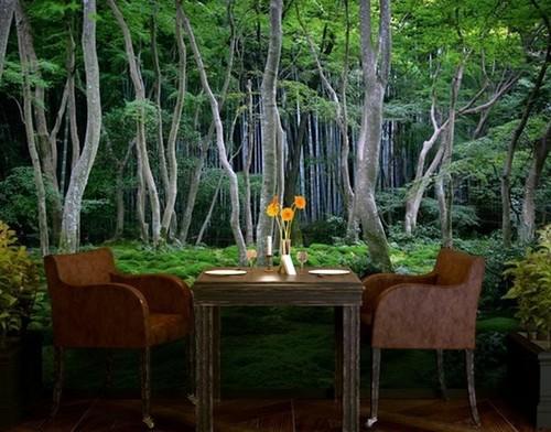 metsä tapetti Metsä Taustakuva valokuvatapetti Metsä taustakuva valokuvatapetti metsä puunrungot taustakuva metsän rahasto taustakuva