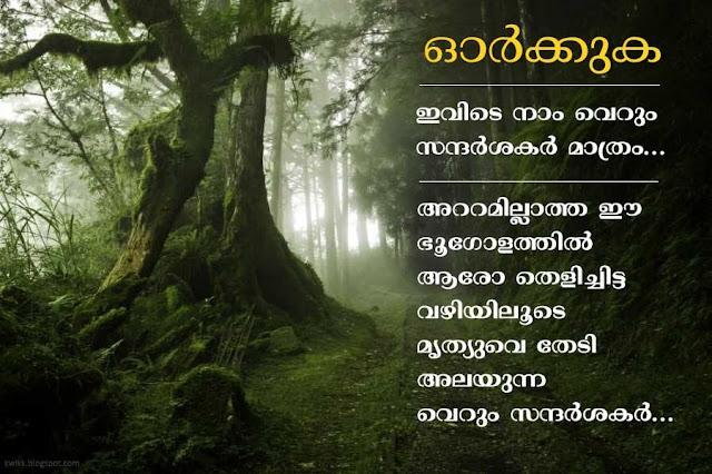 Shareable Malayalam Quotes about life and nostalgia | Kwikk Malayalam Quotes Collection
