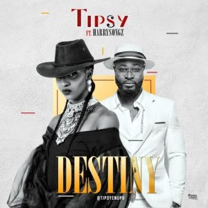 Naija MUSIC: Tipsy Ft. Harrysong – Destiny