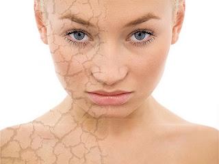 kulit sehat dengan minyak argan