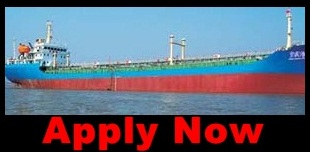 Open Recruitment Crew For Container Ship