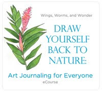 Draw Yourself back to Nature eCourse