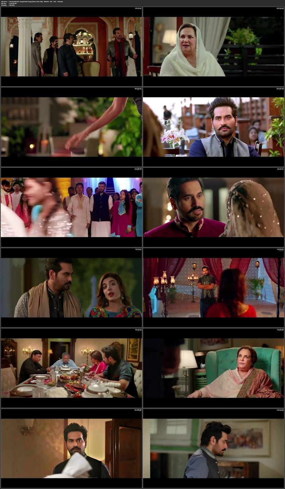 Punjab Nahi Jaungi 2017 Pakistani Urdu 400MB WEB HD 480p