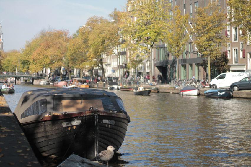 que visiter a Amsterdam blog