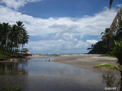 Praia de Jeribucaçu Itacaré Bahia