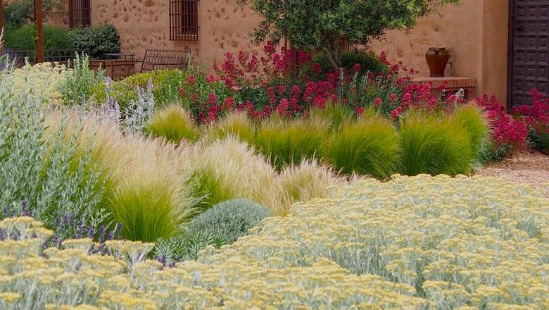Jardin con plantas mediterráneas y gramineas en Toledo de Miguel Urquijo uno de los paisajistas contemporáneos