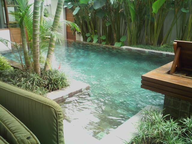 kolam renang dengan pepohonan