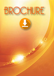 <b>Download Brochure</b>