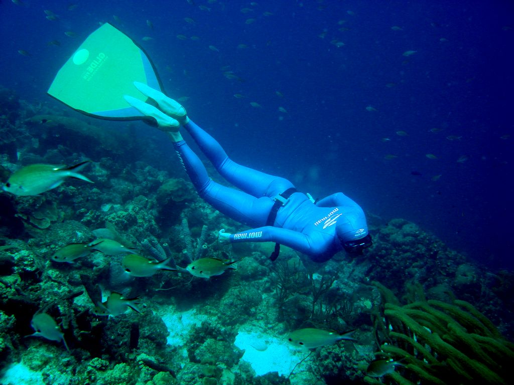Are You Brave Enough For Free Diving?