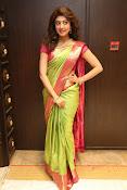 pranitha glam pics in saree-thumbnail-3