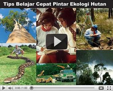 ekologi-hutan.blogspot.com