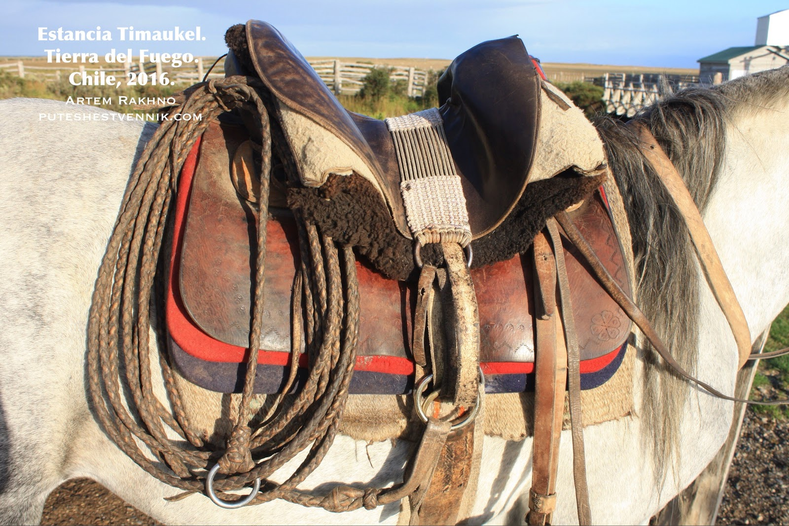 Седло лошади на Огненной Земле