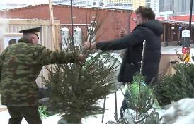 первые кадры «дуэли» Золотова и Навального