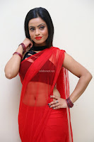 Aasma Syed in Red Saree Sleeveless Black Choli Spicy Pics ~  Exclusive Celebrities Galleries 101.jpg
