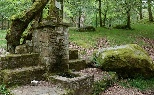 Fuente en La Pesanca - Asturias
