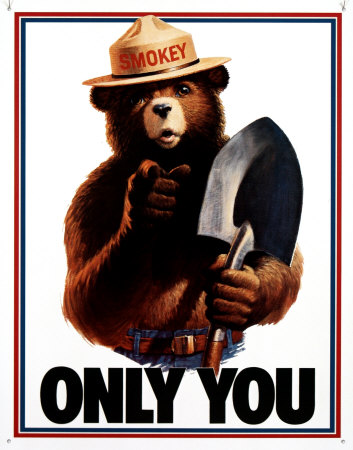 ce24ee40f52 PLEASE REMEMBER. ONLY YOU CAN PREVENT WILDFIRES
