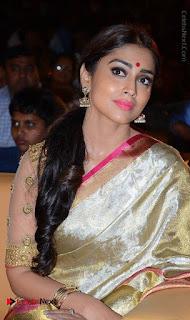 Actress Shriya Saran New Images in Silk Saree at Gautamiputra Satakarni Audio Launch  0005.jpg
