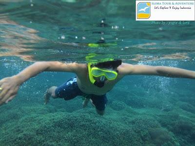 Snorkeling menikmati keindahan Gili Trawangan
