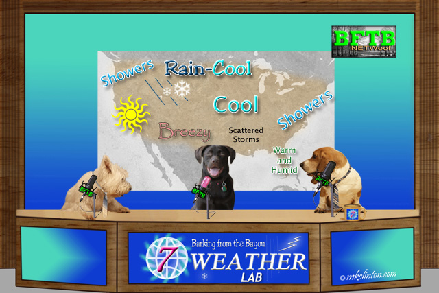 BFTB NETWoof Weather with forecast map on back screen
