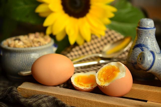 Dieta do ovo cura pela natureza Simples Porém muito Eficaz