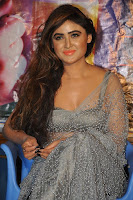 Actress Sony Charistha Latest Pos in Silver Saree at Black Money Movie Audio Launch  0017.jpg