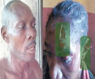woman fights fulani herdsman farm attack edo