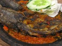 Kandungan Gizi dan Manfaat ikan lele bagi kesehatan manusia