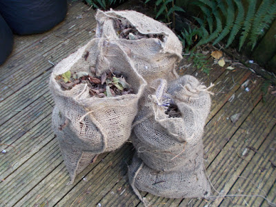 Bags of leaves How to make leaf mould The Green Fingered Blog