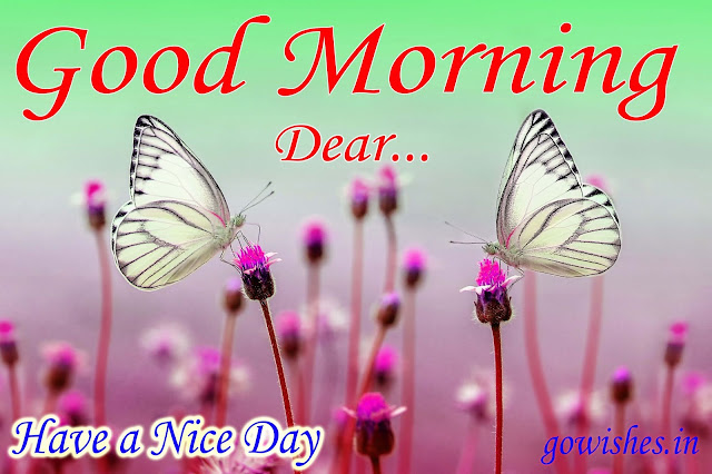 Good Morning wishes Image wallpaper Today 09-12-2018