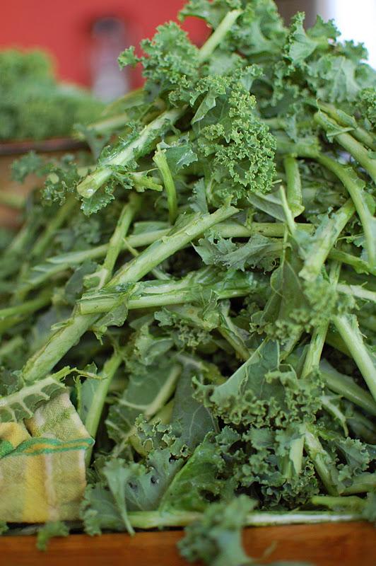 To Freeze Kale