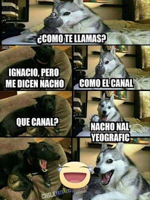 Cómo te llamas? , Ignacio, pero me dicen Nacho, como el canal, qué canal?, Nacho nal geografic