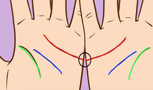 Palmistry: Bring Your Hands Together, If These Lines Meet, This Is What It Means