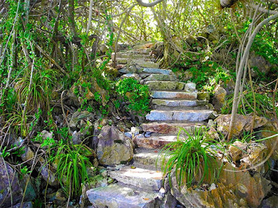 #payabay, #payabayresort, grounds, nature, paya bay resort, stairs, magic of paya,
