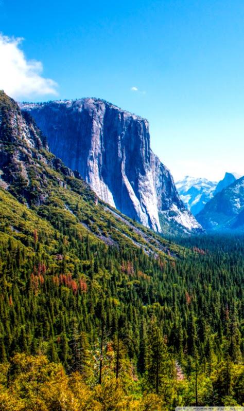 Yosemite National Park Yosemite valley ❤ 4K HD Desktop Wallpaper