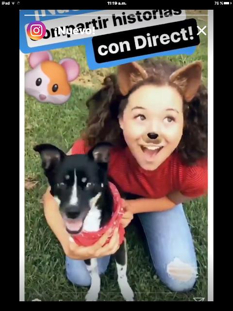 instagram-compartir-historia