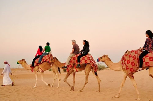 Du lịch dai bai cưỡi lạc đà