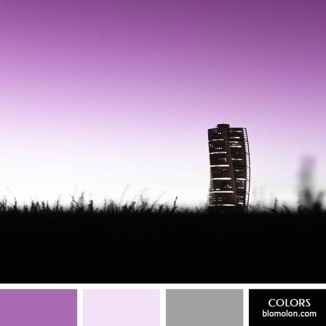 variedad_en_color_color_67