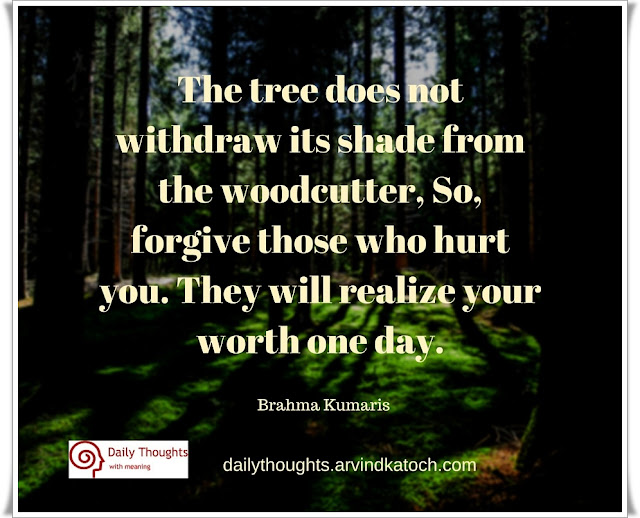 Daily Thought, Brahma Kumaris, tree, withdraw, shade, woodcutter, hurt, worth,