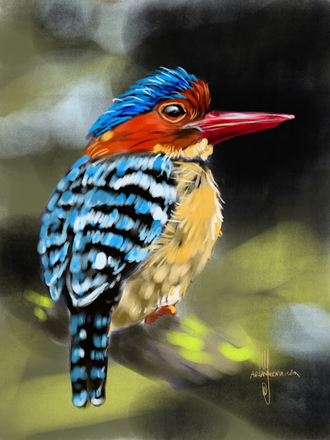 Banded Kingfisher bird painting by Artmagenta